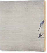 Single Penguin In Deep Thought Wood Print