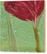 Single Poppy Wood Print