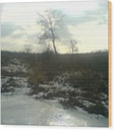 Single Tree Close By The Ice Lake.1 Wood Print