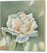 Single  White Rose Wood Print