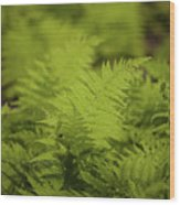Singular Wood Print