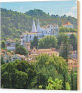 Sintra National Palace Aerial Wood Print