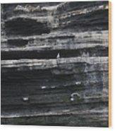 Sir Seagull Wood Print