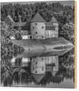 Sisak Fortress, Croatia Wood Print