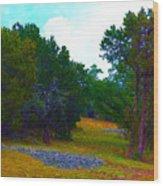 Sister's Hill Country Backyard Wood Print