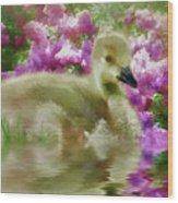 Sitting Among The Lilacs Wood Print