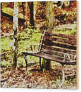 Sitting Wood Print