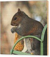 Sitting Squirrel Wood Print