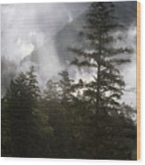 Siuslaw National Forest Wood Print