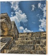 Six And A Half Steps From The Top Wood Print