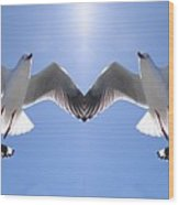 Six Heavenly Backlit Seagulls Flying Overhead In Blue Sky. Wood Print
