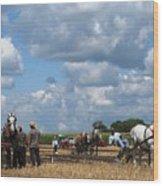 Six Horses Wood Print