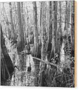 Six Mile Slough Wood Print by Steven Scott
