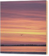 Six Seagulls At Sunrise Wood Print