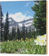 Siyeh Pass Wood Print
