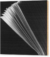 Size Ten Envelopes Wood Print