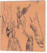 Sjb-03 Wood Print