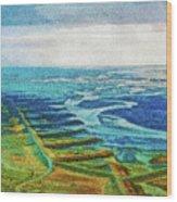 Skaftafell Floodplain Wood Print