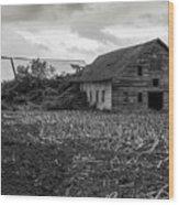 Skagit Flats-6962 Wood Print