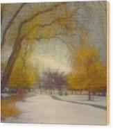 Skaha Path In Winter Wood Print