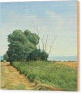 Skaneatles Field Wood Print