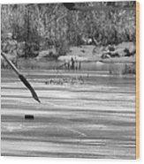 Skating On The Pond Wood Print