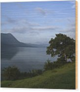 Skc 3959 Overlooking The Lake Wood Print
