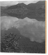 Skc 3981 Nature's Mirror. Wood Print