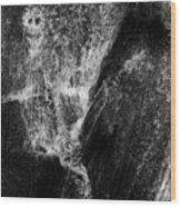 Skeleton And Goblin Water Rock Wood Print