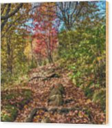 Skeleton Of Graveyard Fields Wood Print