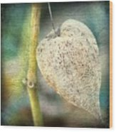 Skeleton Physalis Wood Print