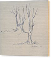 Sketch 4 Wood Print