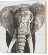 Sketch Elephant Wood Print