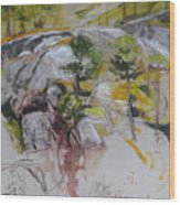 Sketch For Ogwen Painting Wood Print