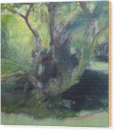 Sketch Of A Shady Glade. Wood Print