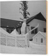 Ski Jump Wood Print
