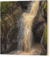 Skillet Creek Into The Deep Pool Wood Print