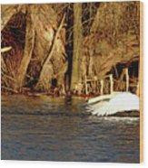 Skimming The Water Wood Print