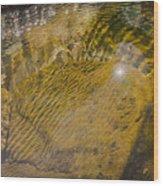 Skin River Wood Print