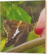 Skipper Trying To Hide Behind A Flower Wood Print