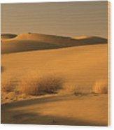 Skn 1124 Desert Landscape Wood Print