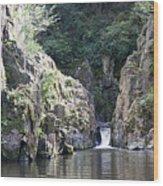 Skryje Waterfall And Pond Wood Print