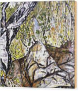 Skryta Identita Wood Print