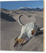 Skull At The Great Sand Dunes Wood Print