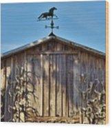 Skull Barn Wood Print