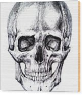 Skull Drawing Wood Print