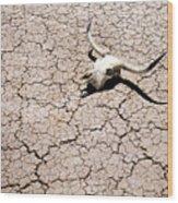 Skull In Desert 2 Wood Print
