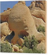 Skull Rock - The Hills Have Eyes Wood Print by Christine Till