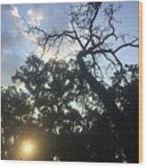 Sky And Sun Wood Print