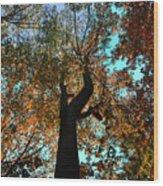 Sky Flower Wood Print